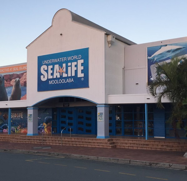 Sea Life Underwater World Mooloolaba