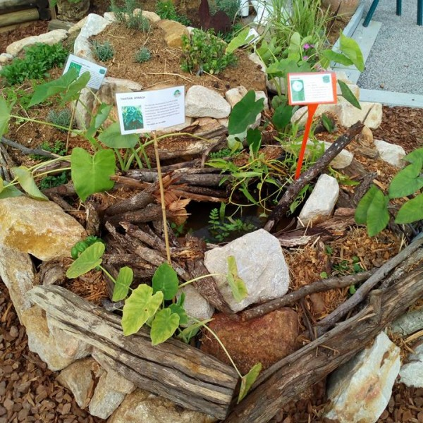 Recycled garden at Queensland Garden Expo